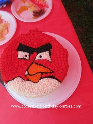 Coolest Angry Birds Birthday Party